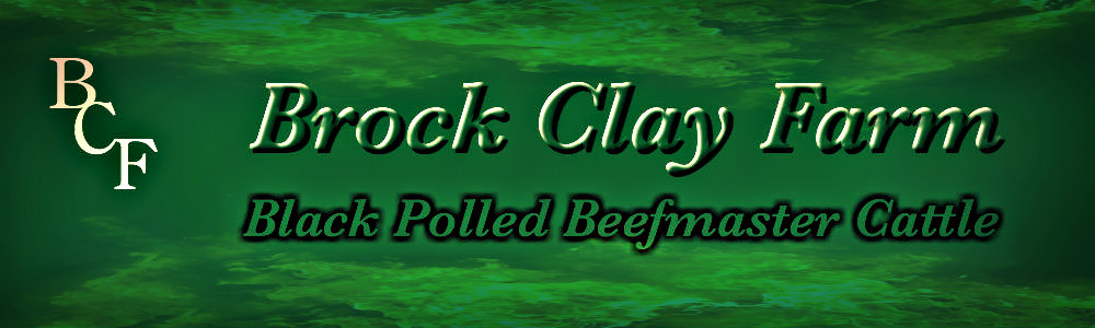 Brock Clay Farm